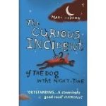 Curious Incident of the Dog in the Nightime